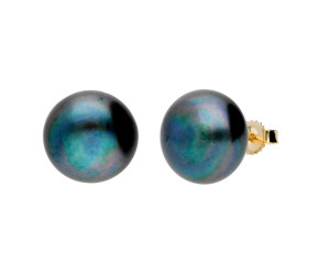 9ct Gold 12mm Freshwater Black Button Pearl Earrings