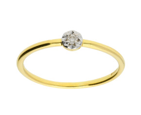 9ct Yellow & White Gold Diamond Single Stone Ring