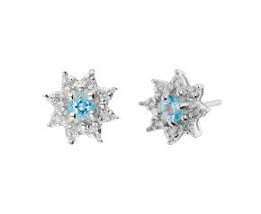 9ct White Gold Aquamarine & Diamond Cluster Earrings
